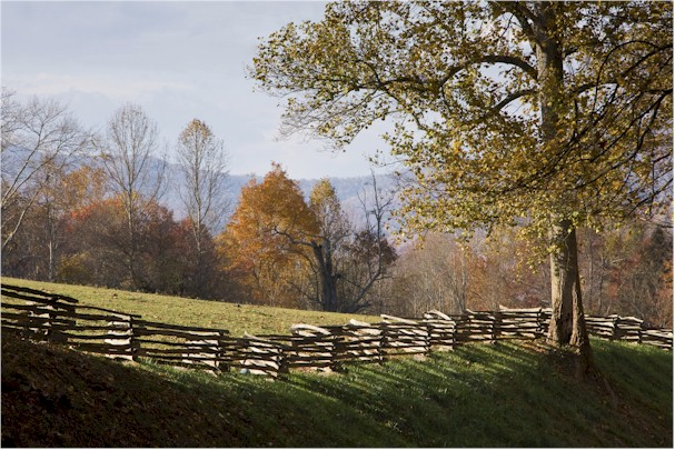 fence-pasture
